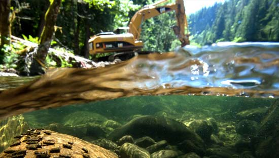 Heavy equipment performing the necessary work to clear a river