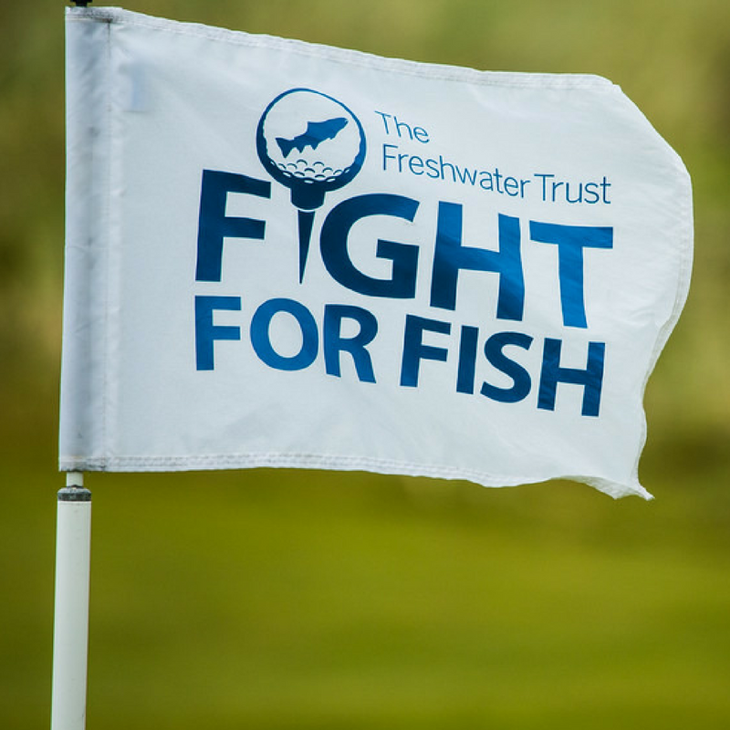 Fight for Fish Charity