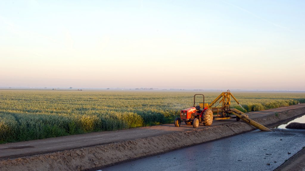 A wheat field receives water from a pumping system tapped into an irrigation canal in the southern region of the San Joaquin Valley. John Chacon / California Department of Water Resources.