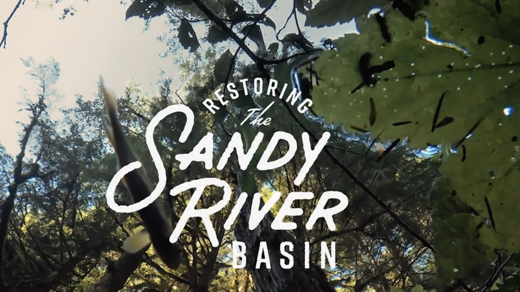 Sandy River Basin Video Cover Photo